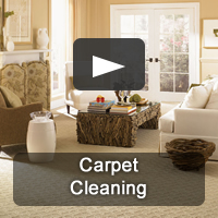 Pro-Care is Nashville's premiere carpet cleaning company specializing in all types of carpet.