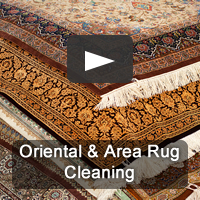 Pro-Care specializes in rug cleaning - area rug cleaning, oriental rug cleaning and all custom rugs.