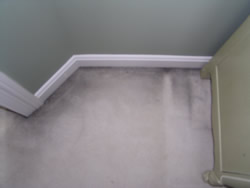 Those ugly black lines around the baseboards of carpet are known as Filtration Soiling.