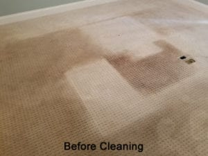 Traffic Lane Graying occurs when carpet fibers experience Abrasion Dullness and look different depending on their wear.